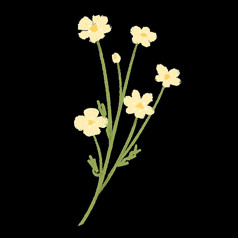 手绘-氛围花朵贴纸3-花朵