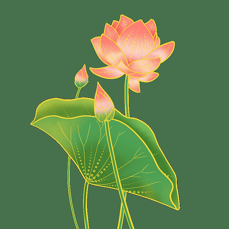 中国风-国潮植物元素贴纸-荷花
